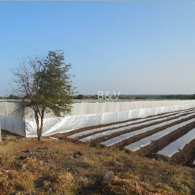 Shade Net Manufacturing Companies In India   Weed Mat